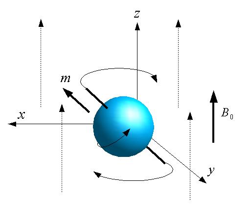 Mement magnetique nucleaire